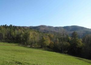 Wienerwald-Landschaft